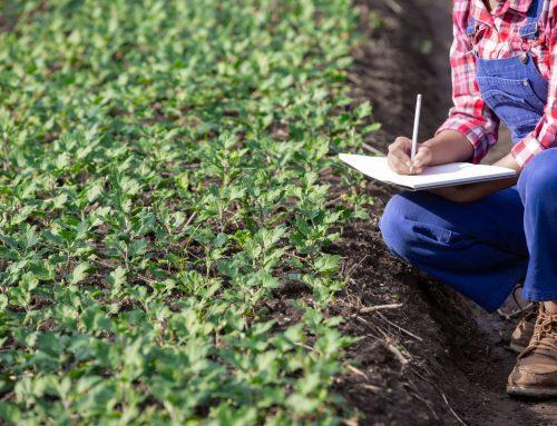 Απαλλαγή των κατά κύριο επάγγελμα αγροτών από το Τέλος Επιτηδεύματος